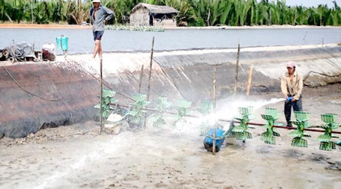 Hạn chế chất thải trong nuôi thủy sản