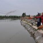 Mô hình nuôi cá liên hoàn cho thu nhập tiền tỷ