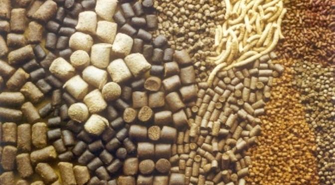 Phần mềm tra cứu danh mục Thức ăn và Chế phẩm sinh học dùng trong Nuôi trồng thủy sản