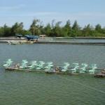Quản lý chất thải trong ao nuôi thủy sản