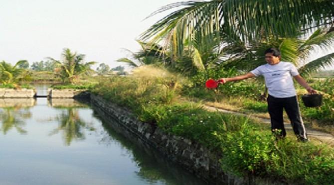 Lưu ý nuôi trồng thủy sản trong mùa đông