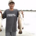 Nghiên cứu nuôi cá chẽm tăng trưởng nhanh với chi phí thấp