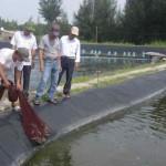 Thanh Hóa: Khai thác thế mạnh vùng triều, nuôi thủy sản theo hướng hiệu quả, bền vững