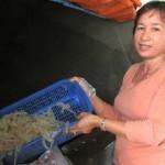 Thành tỷ phú nhờ con sứa biển