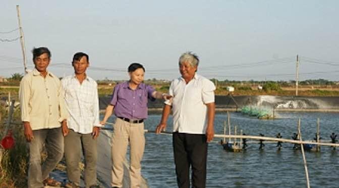 Mô hình nuôi trồng thủy sản 3 trong 1 hạn chế dịch bệnh