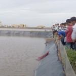 Ninh Thuận: Nuôi tôm công nghiệp không sử dụng kháng sinh, hóa chất theo VietGAP