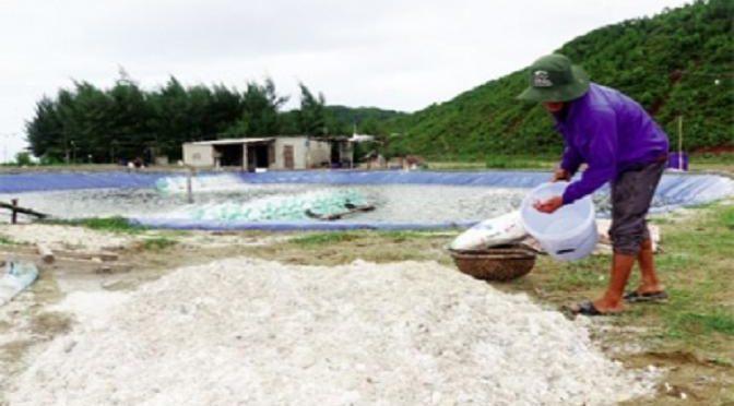 Giải pháp khắc phục ao nuôi sau mưa