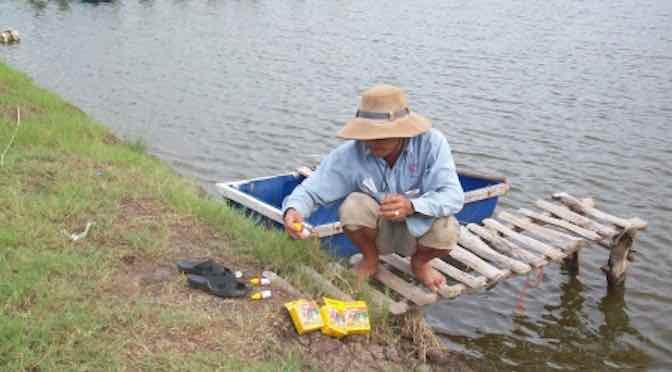 Một số biện pháp để tăng cường sức đề kháng cho động vật thủy sản