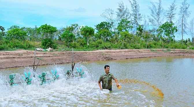 Phòng ngừa khí độc H2S gây hại tôm